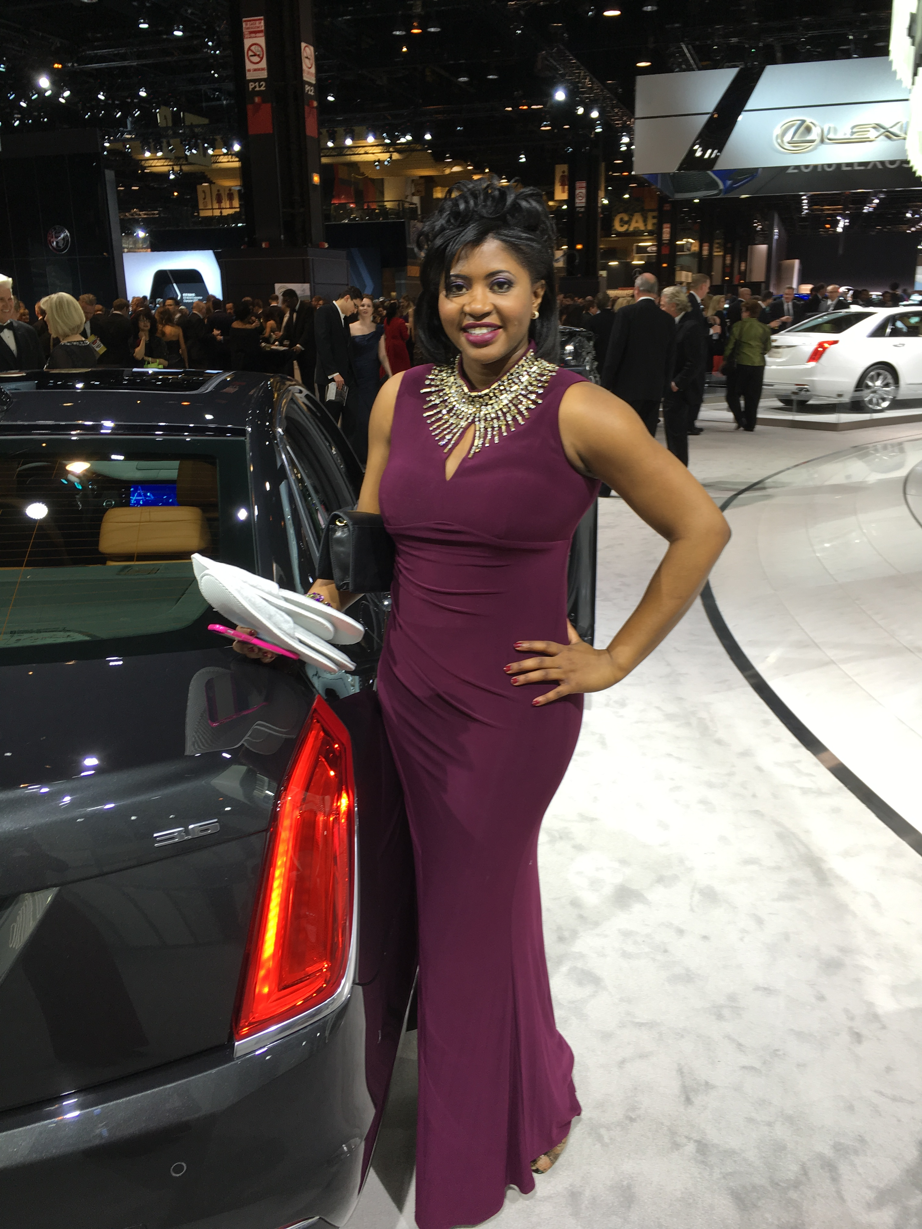 First Look for Charity Auto Show Gala
