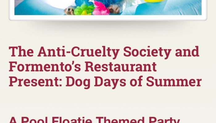Event Alert! Dog Days of Summer – August 15th